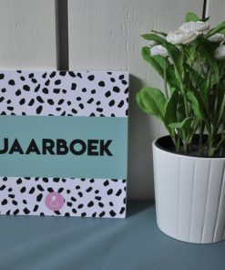 jaarboek mint studio ins en outs